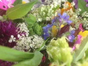 Cutting Garden flowers